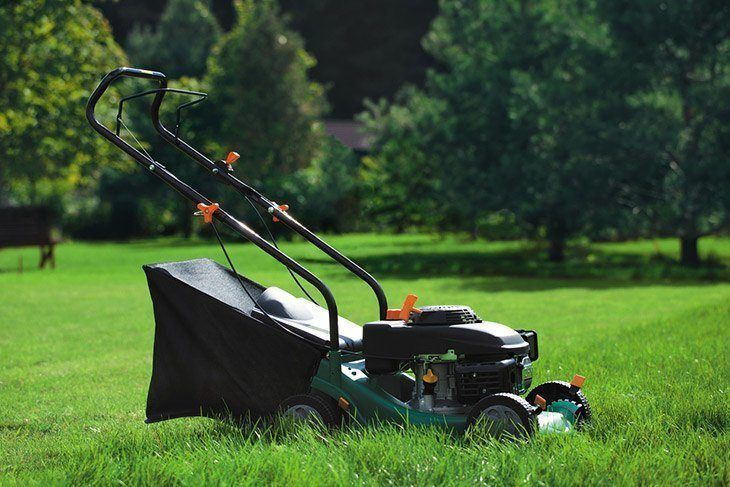 How to Find the Right Lawn Mower Repair Service Provider?