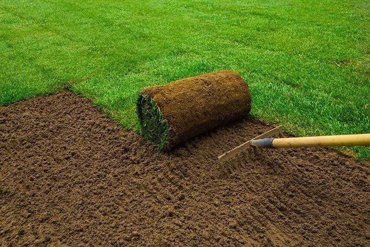 A man laying sod grass_How to Lay Sod over Existing Lawn
