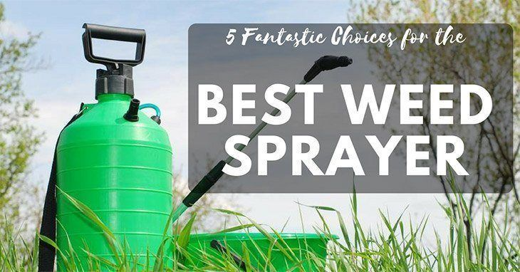 best weed sprayer