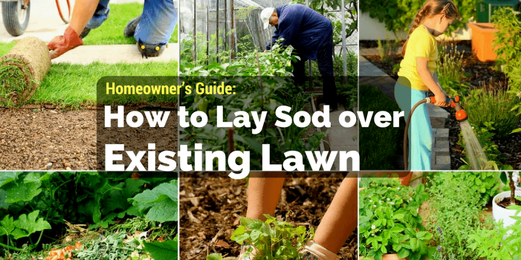 How to Lay Sod over Existing Lawn