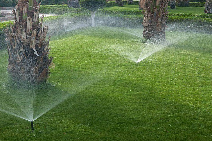 Irrigating the sod to make it grow_How to Lay Sod over Existing Lawn