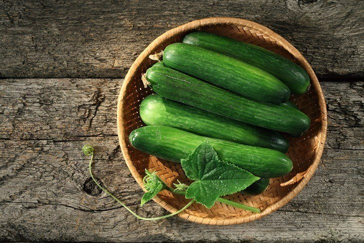 A basket of freshly picked cucumber
