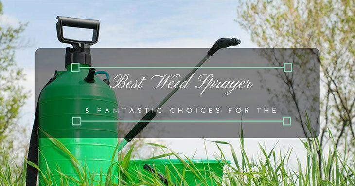 Best-Weed-Sprayer