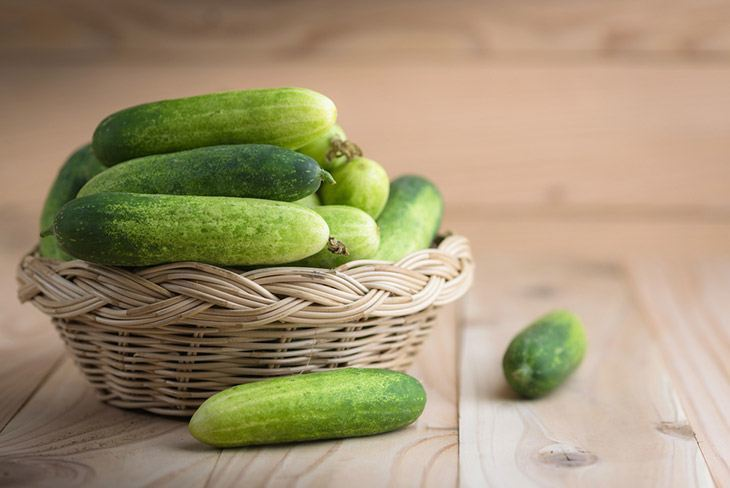 Fresh cucumbers in the basket