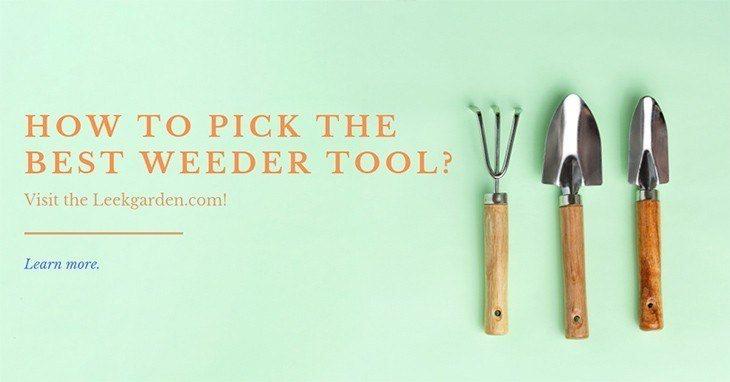 Best weeder tool