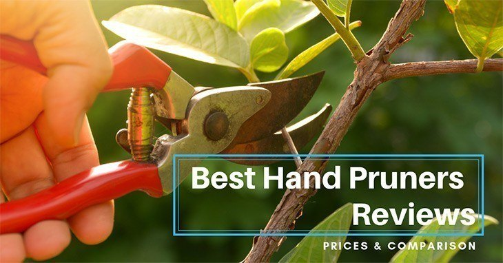 best hand pruners gardener pruning trees with pruning shears