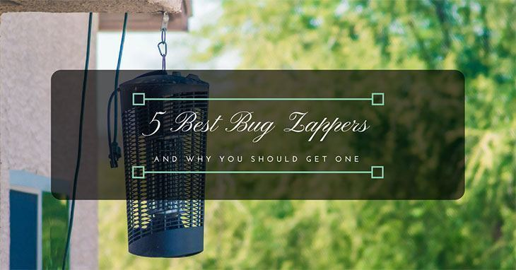 5 Best Bug Zappers 2019 (Reviews and Recommendations)