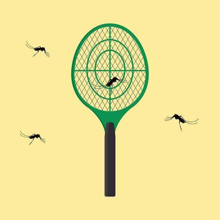 A-mosquito-trapped-on-the-electric-racket-best-mosquito-trap