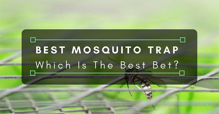 Best-Mosquito-Trap