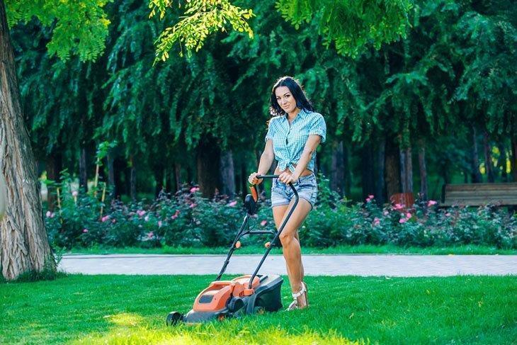 Lawn mowing: keep your garden neat and clean