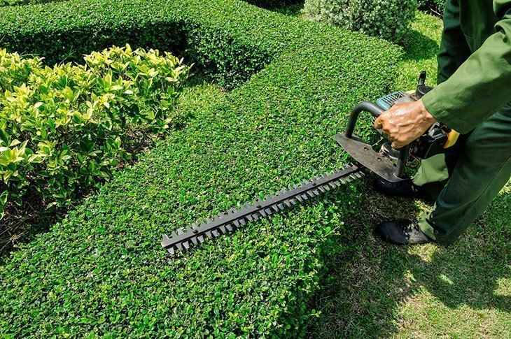 Getting the Best Out of Landscaping Services