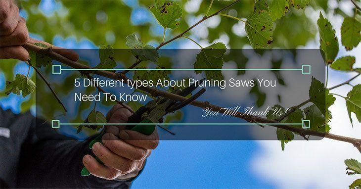 Pruning-Saws