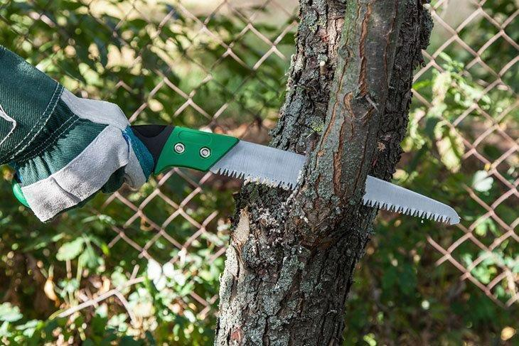 Pruning-fruit-trees-garden-with-a-hacksaw-Pruning-Saws