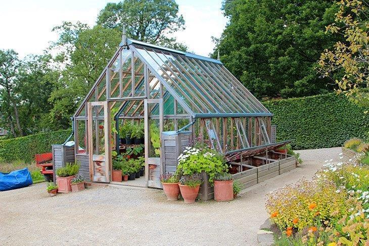 Greenhouse-behind-flowers-Polycarbonate-Greenhouse-Reviews
