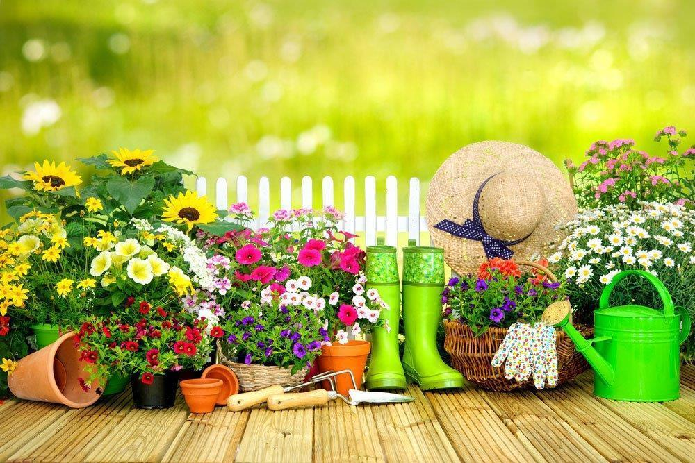 Gardening-tools-and-flowers-on-the-terrace-in-the-garden