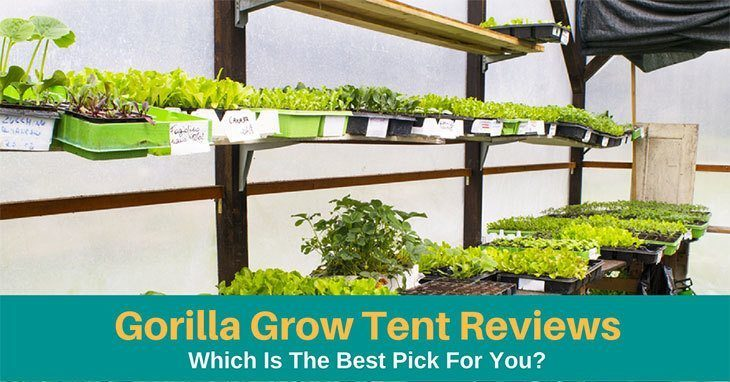 sc 1 st  LeekGarden & 05 Best Gorilla Grow Tent 2019: Which Is The Best Pick For You?