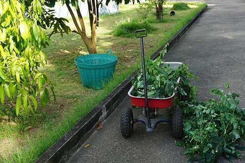 Red-wagon-carried-huge-loads-of-tree-branches,-gardening-tool,useful-tool
