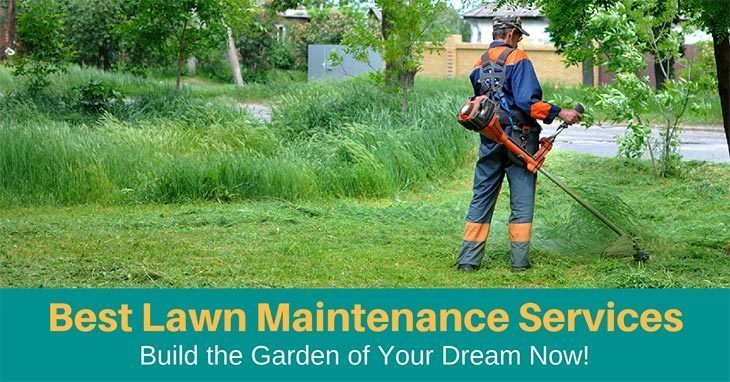 Best Lawn Maintenance Services