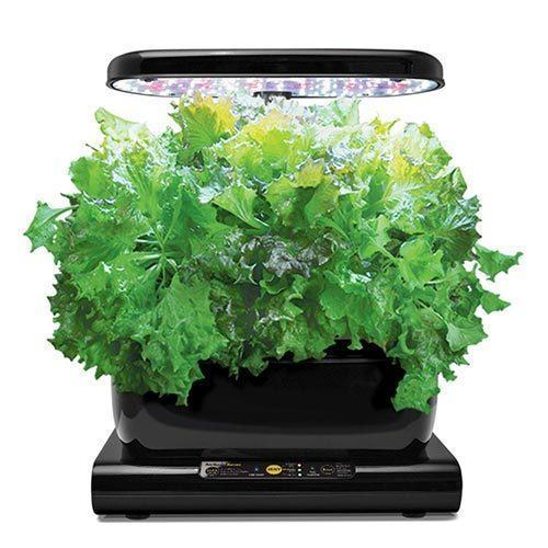 AeroGarden-Harvest-2015-with-Gourmet-Herb-Seed-Pod-Kit,-Black