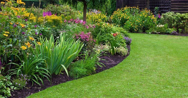 Green Lawn In A Colourful Landscaped Formal Garden