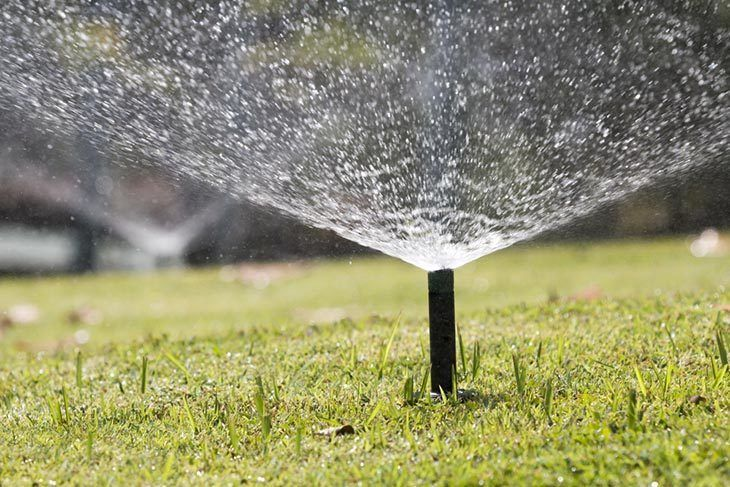 sprinkler-head-watering-in-park