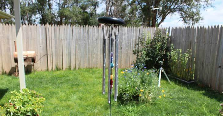 Help! How to Keep Birds from Eating Grass Seed: 6 Easy Ways