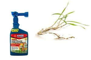 A-bottle-Bayer-Advanced-weed-and-crabgrass-killer