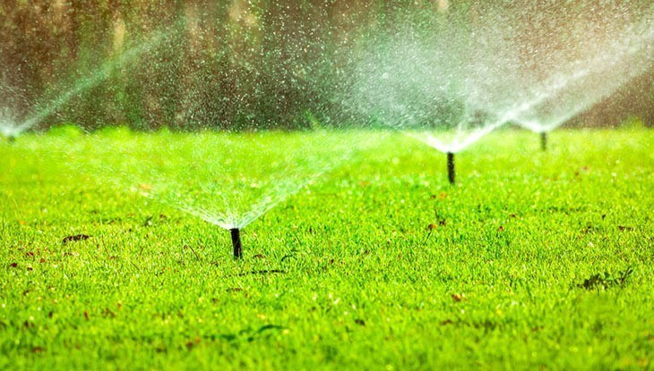 The Big Tips: Best Ways to Water Lawn without a Sprinkler System