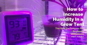 How to increase humidity in grow tent