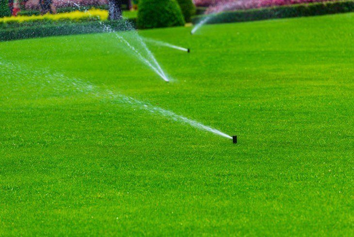 Lawn sprinkler spaying water over green grass. Irrigation system - Install an Irrigation System