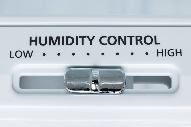 How to increase humidity in a grow tent: The Best Techniques For Beginners