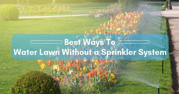 best-way-to-water-lawn-without-a-sprinkler-system