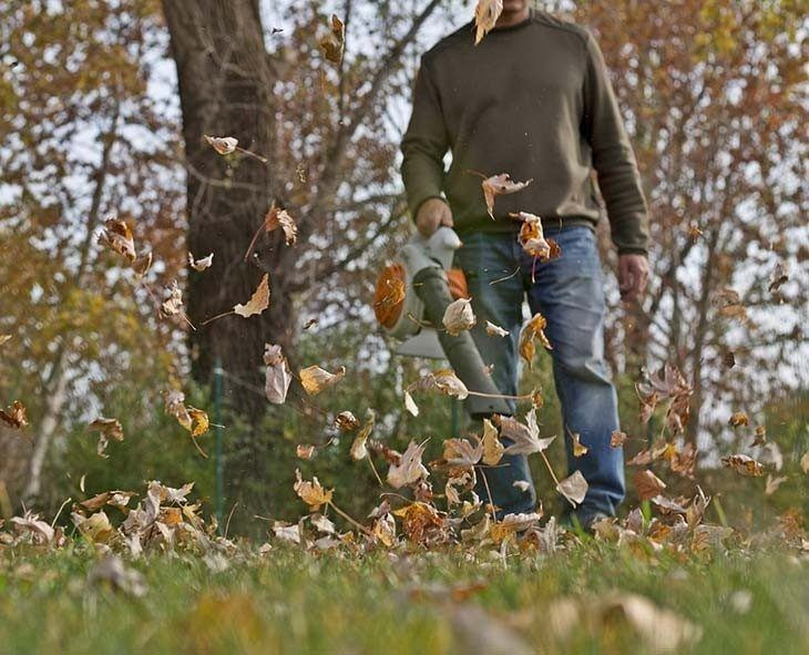 Handheld leaf blowers