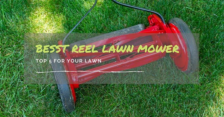 Best-Reel-Mower