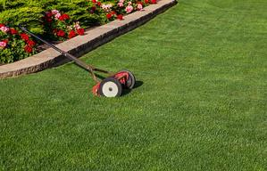 Your-lawn-will-have-a-perfect-looking-with-the-best-reel-mower