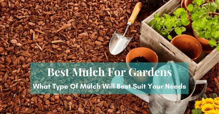 Best Mulch For Gardens